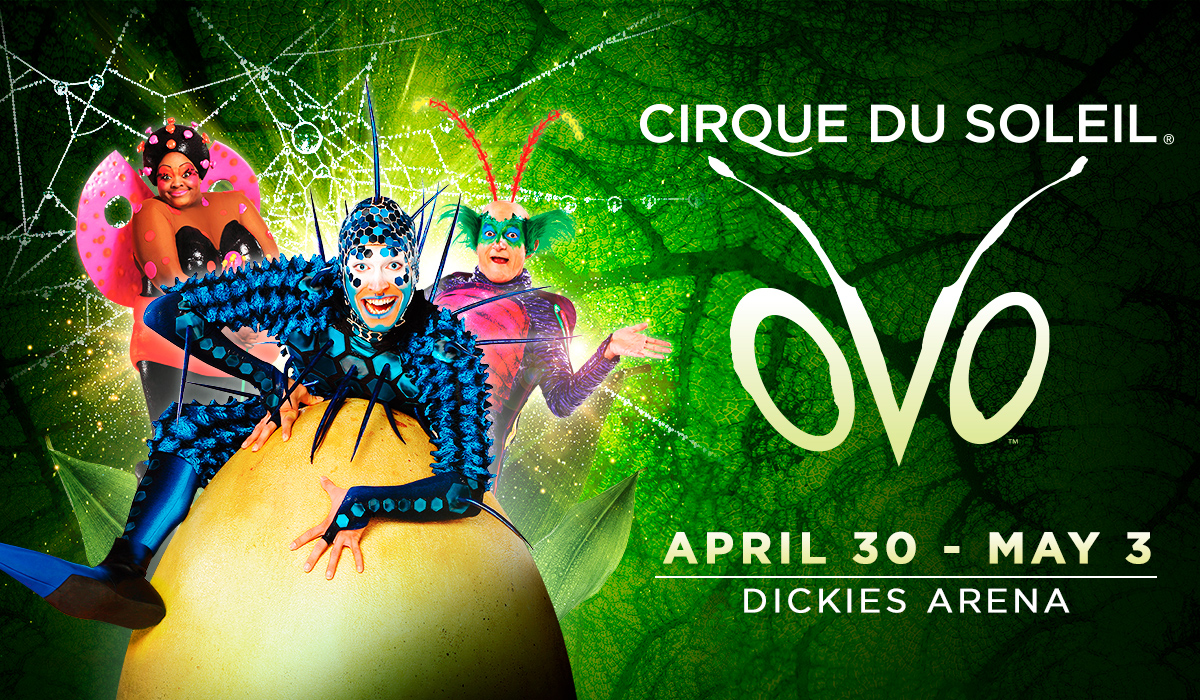 OVO from Cirque du Soleil - Event Listing